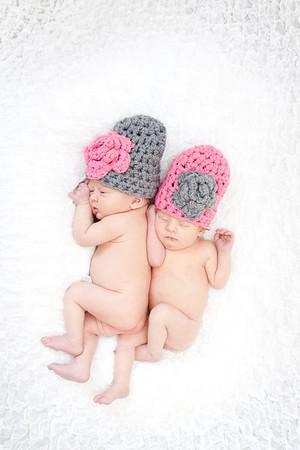 Koch Twins