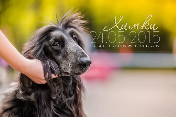 Dog Show 24.05.2015
