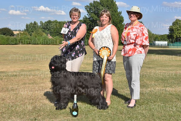Alfreton & District Canine Society 2018
