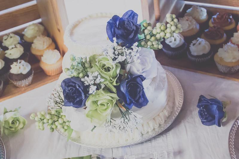 Cake-8483.jpg