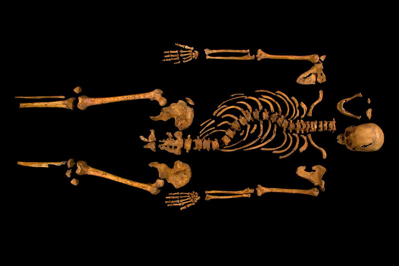 . The skeleton of Richard III, which was discovered at the Grey Friars excavation site in Leicester, central England, is seen in this photograph provided by the University of Leicester and received in London on February 4, 2013. A skeleton with a cleaved skull and a curved spine entombed under a car park is that of Richard III, scientific tests confirmed, solving a 500-year-old mystery about the final resting place of the last English king to die in battle.  REUTERS/University of Leicester/Handout