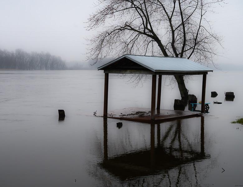 04-07-2020-fog-14.jpg