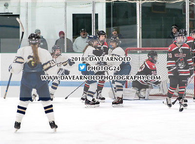 1/24/2018 - Girls varsity Hockey - Wellesley vs Needham