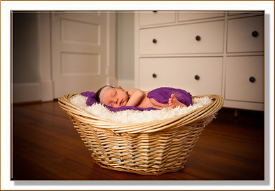 Newborn Portraiture