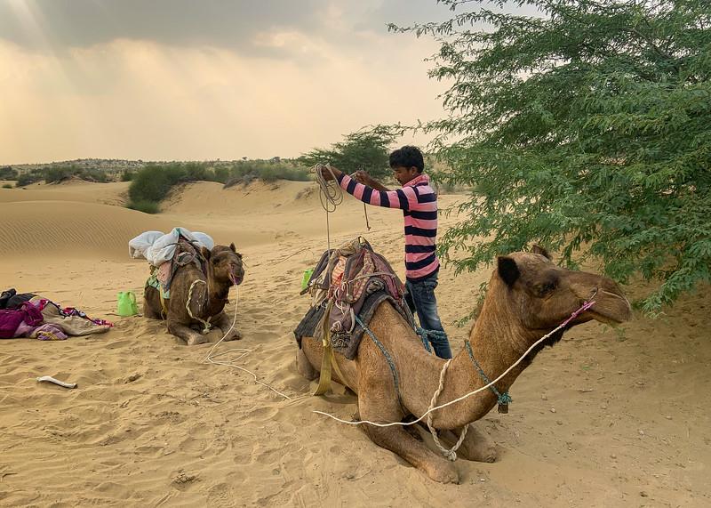 India-Jaisalmer-2019-6022.jpg