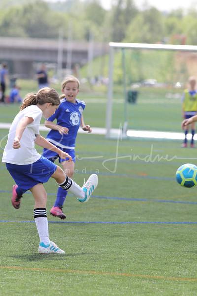 Falcons Soccer