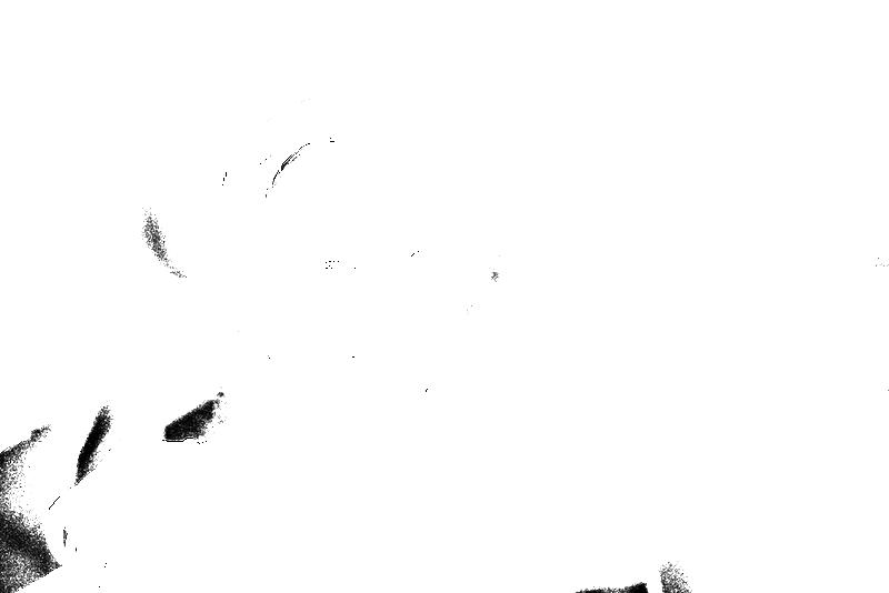 DSC08949.png
