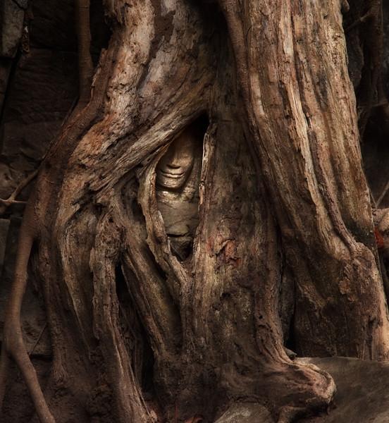 """Forsaken Nymph""  Apsara statue devoured by a tree, Ta Prohm temple, Angkor."