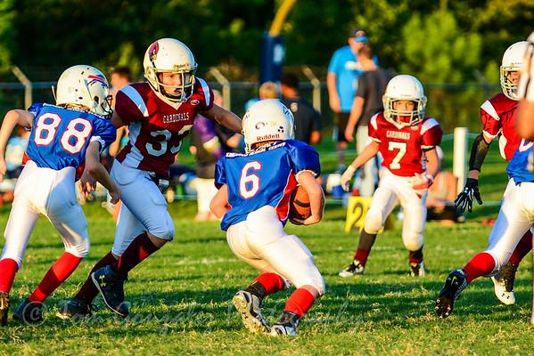 Junior Cardinals 2014