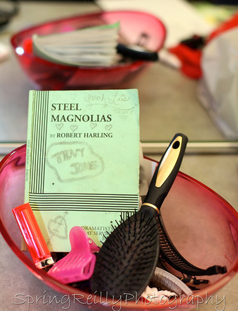 Ajax Community Theatre-Steel Magnolias