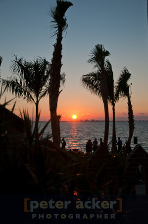 Jazz Sunsets