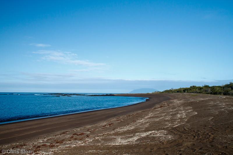 Playa Tortoga Negra, Isabela, Galapagos (11-24-2011)-6.jpg