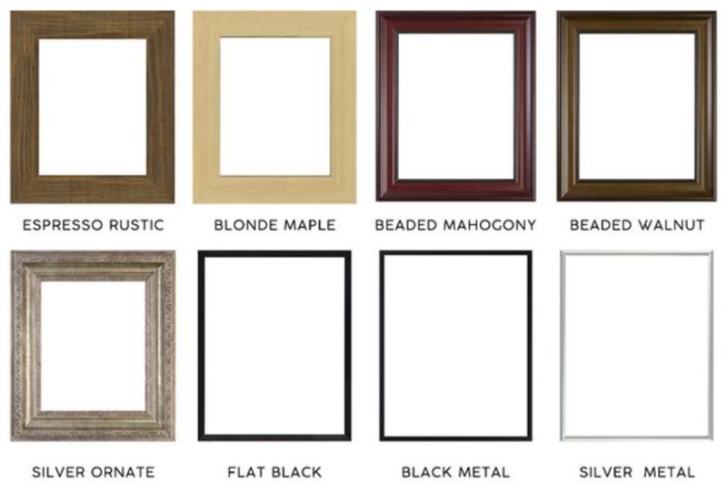 Frame Collection 3.png