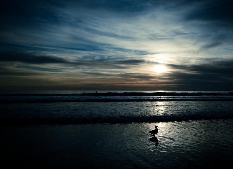 venice_beach_blue-5775.jpg