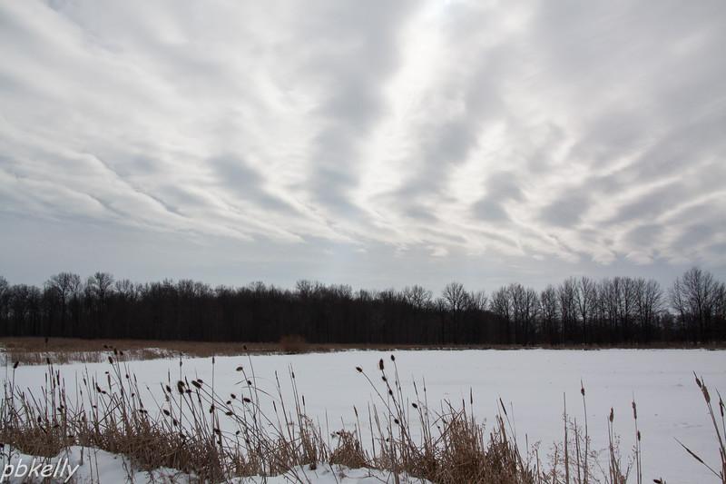 Skies 013114-2.jpg