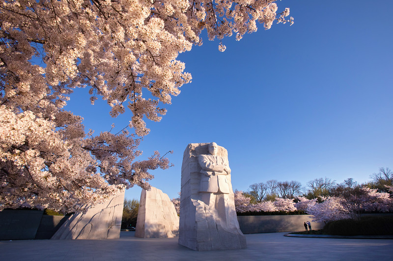 Martin Luther King, Jr. Memorial in springtime