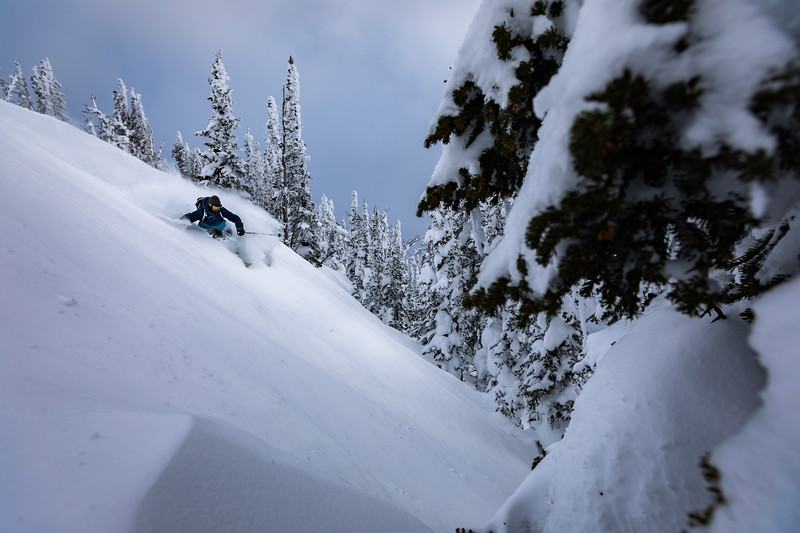 Joey Weamer skiing down the trees on Mt. Glory. Checkerspot Road Trip.