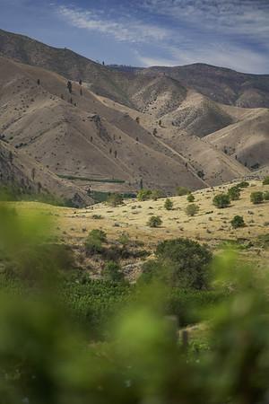 Scenics & Agriculture