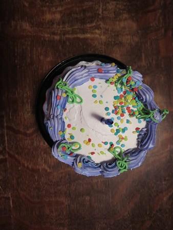 Hannah's 1st Birthday
