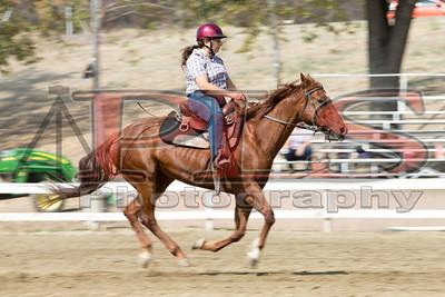 Rider 20