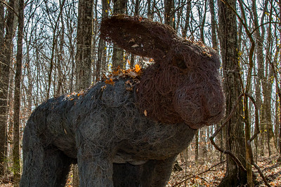 2017 02 Cheekwood Sculpture Trail