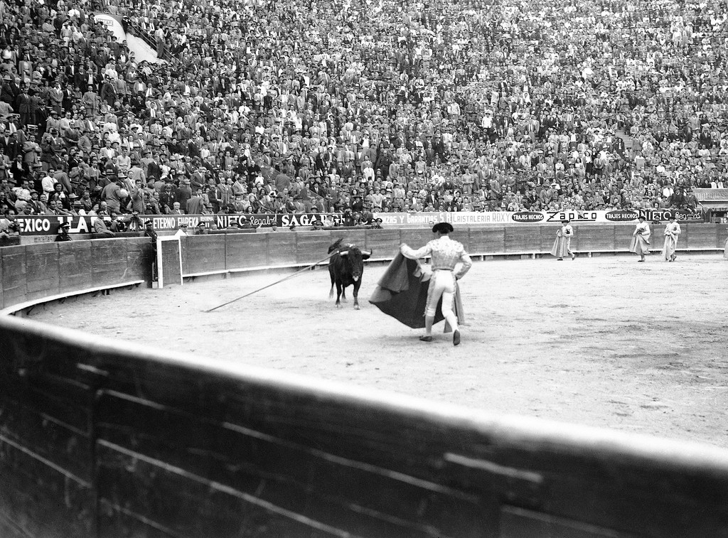 . Lorenza Garza, matador with back to camera, attracts the bull with his cape. The bull has been badly �picked� and the picador�s lance is still stuck in the bull�s shoulder. Thousands of the fans are on their feet whistling in Mexico City, Jan 19, 1947. (AP Photo)