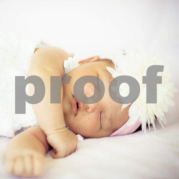 Calissa Newborn Portraits