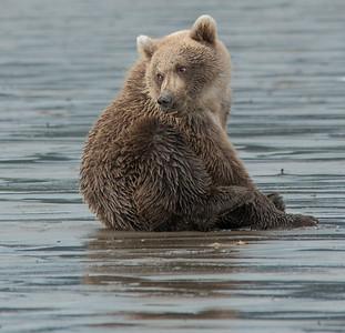 Alaska - August 2014