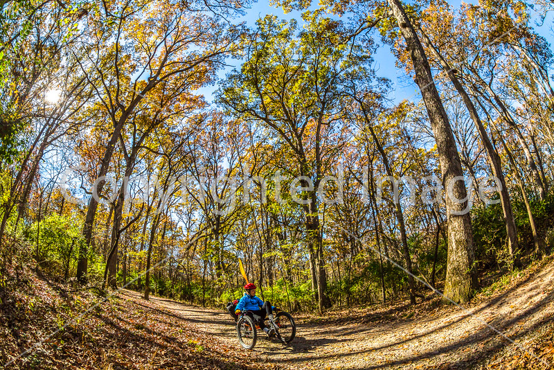 TerraTrike Rambler - Missouri - A Fisheye View of the Woods(in progress)