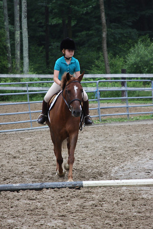 Willy the Wonder Pony