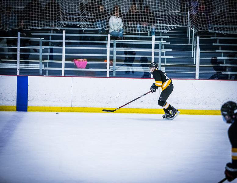 Bruins2-628.jpg