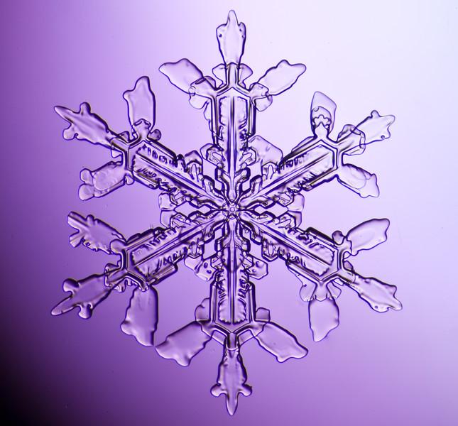 snowflake-3032-Edit.jpg