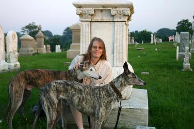 My Greyhounds