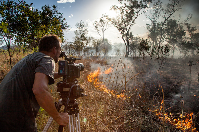 Cameraman Murray Fredericks films a wildlife triggered by lightning (Storm Chasing in Northern Australia for BBC Wonders of The Monsoon.)