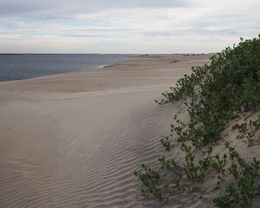 Baja California - Bahia Magdalena - Boca de Soledad
