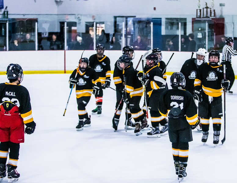 Bruins2-733.jpg