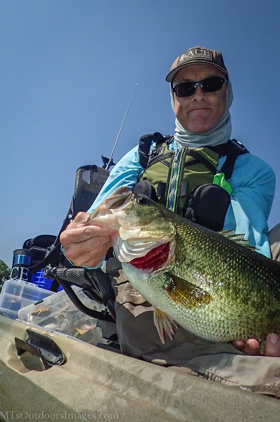 sept 8 big big bass4 (1 of 1).jpg