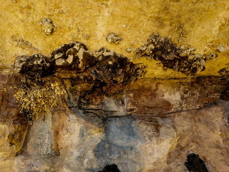 Rock detail with lichen.