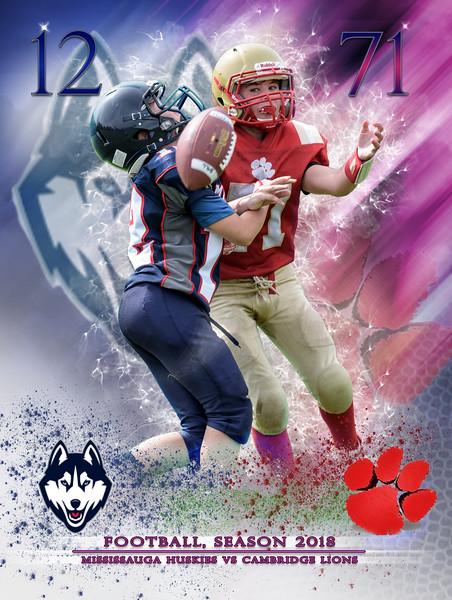 Huskies-Lions-71-12-large-v01.jpg