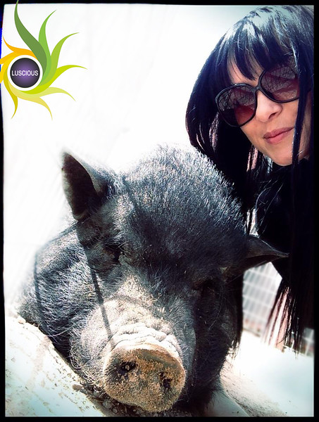 Ivana in Las Vegas at the piggie shelter