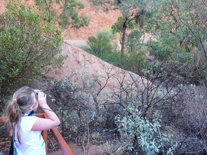 04. Uluru (Ayers Rock)-0152.jpg