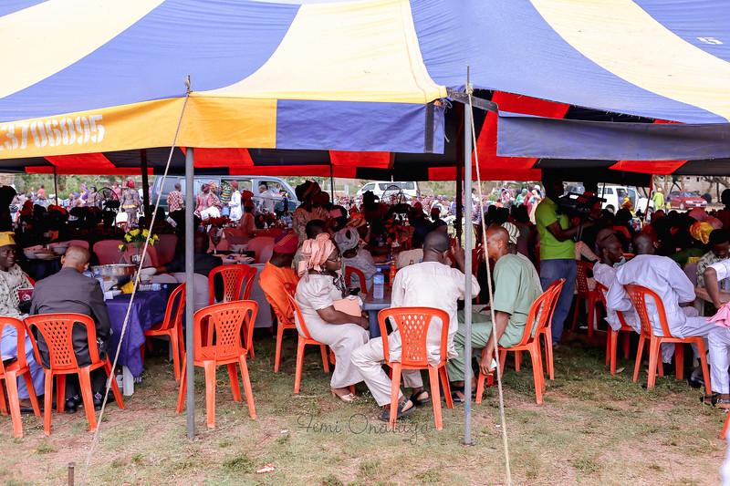 Adeyemo-205.jpg