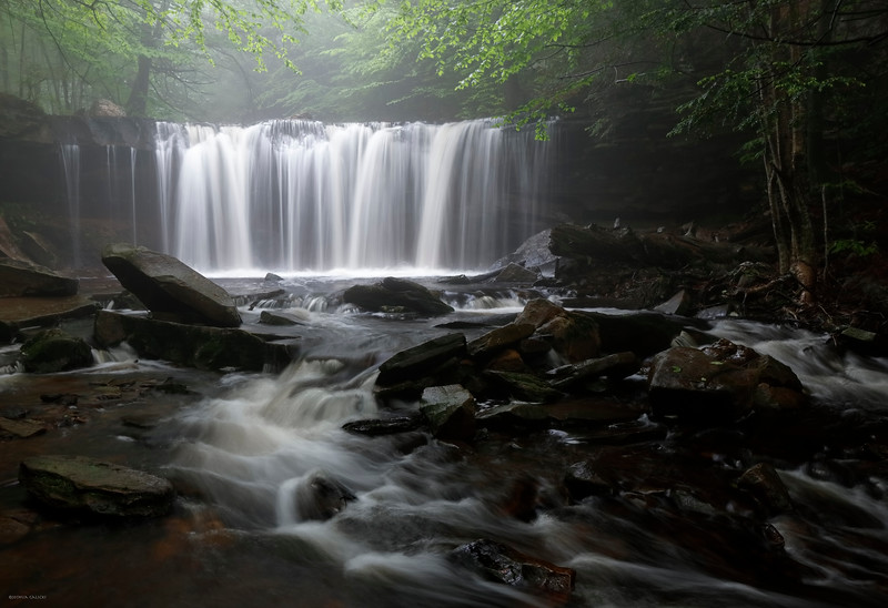 Oneida Falls, Ricketts Glen