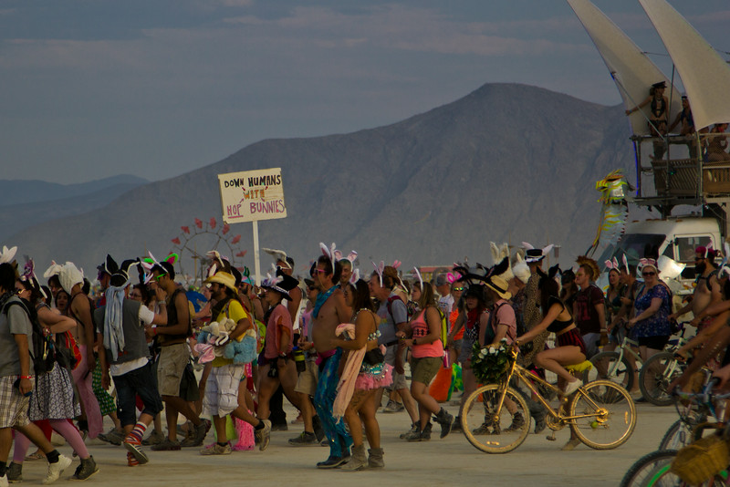 Burning Man 2014-7128.jpg