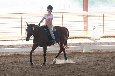 Horse 387