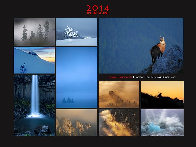 2014 colectie.jpg
