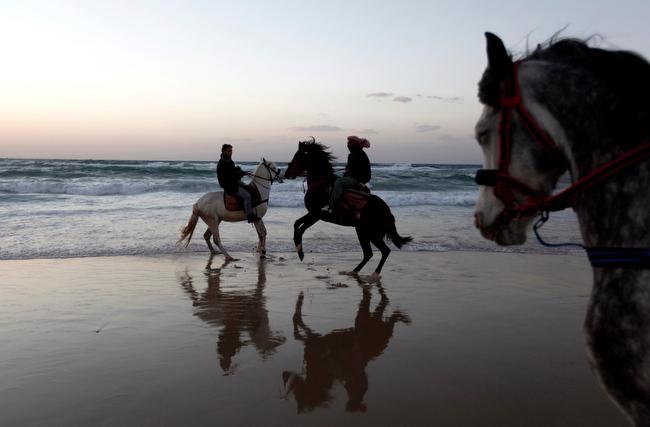. Palestinians ride horses on Gaza beach as the sun sets in Gaza City, Friday, Feb. 15, 2013. (AP Photo/Hatem Moussa)