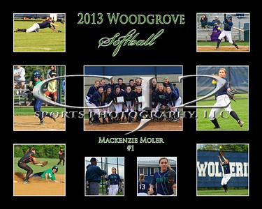 2013 Woodgrove Softball Team
