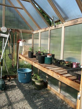 Lynn's Garden 2003