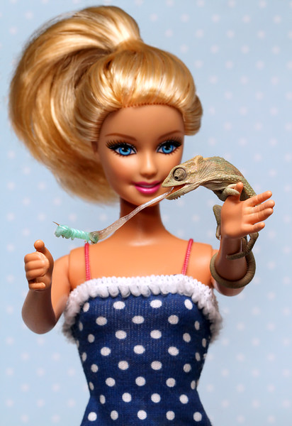 Barbie And Her Bradypodion.jpg